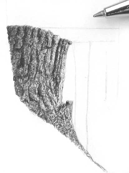 DRAWING TREE BARK part 2 - BALLPOINT PEN DRAWING TUTORIALS at Rural
